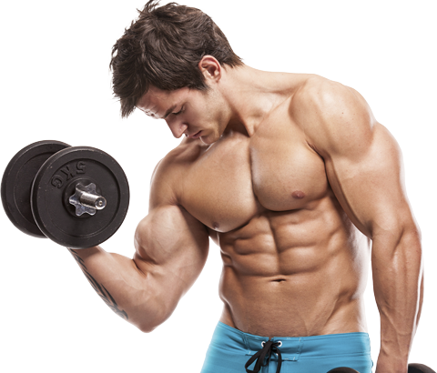 nutrition homme musculation